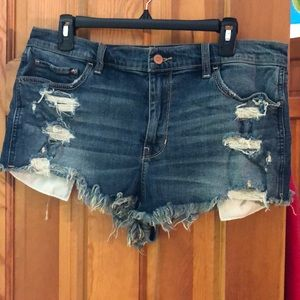 Hollister distresses Jean shorts